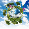 earth with the different elements (my-way-love) Tags: bychipvnimageuploader tree earth environment globe planet ecology nature plant green sky forest concept blue global illustration conservation summer symbol growth design space isolated cloud environmental clouds sphere day lush land lawn small atmosphere air country grass aerial seasons world 3d reforestation spherical map house life travel sunlight view energy