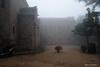 2512  Ermita Sta Fe del Montseny con niebla, Barcelona (Ricard Gabarrús) Tags: niebla boira ermita bosque jardin naturaleza clima ricardgabarrus olympus ricgaba
