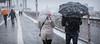 Brooklyn Bridge (dansshots) Tags: snow snowinnewyork snowinnyc noreaster snowstorm dansshots nikon nikond750 picoftheday photooftheday iloveny iheartny umbrella