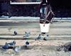 Marlon Iraheta © (Marlon Iraheta) Tags: mamiya7 kodakportra400 filmphotography filmisnotdead filmcommunity film filmphotographers montreal streetphotography marloniraheta montrealphotography believeinfilm mediumformatfilm 120mmfilm