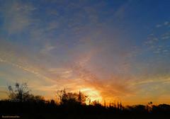 The sunrise of a new day (ricardocarmonafdez) Tags: sunrise landscape sunlight backlight backlighting contrast color dawn sol sun cielo sky nubes clouds fog mist niebla siluetas silhouettes 60d 1785isusm canon naturaleza nature
