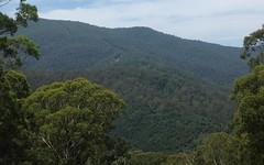 120 Warrigal Range Road, Brogo NSW