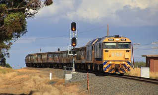 8168 and BL31 pull out of Murtoa loop on 7731V empty grain to Dimboola
