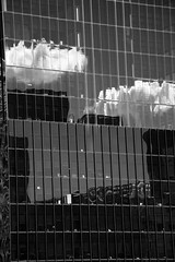 Bright Clouds on Dark Windows (JB by the Sea) Tags: sanfrancisco california march2018 urban financialdistrict reflection reflections distortion blackandwhite bw
