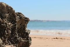 (95hide) Tags: stein stones see strand beach blue waves spring seaside sea cascais portugal
