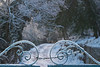 fairy trail (ludi_ste) Tags: path pathway trail gate irongate snow snowy icy ice bluelight cold curl