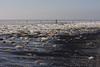 seaside in winter (jotka*26) Tags: northsea jotka26 berlin germany seascape norderney neylands frozen