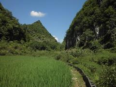Guizhou China 2017 长顺 1 (黔中秘境) Tags: china guizhou asia mountains 中国 贵州 亚洲 山 大自然