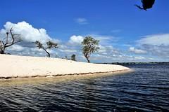 IMG_2494 (JuhaOnTheRoad) Tags: brazil amazonia tapajos para river varzea arapiuns amazon