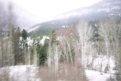 columbia valley (rana.way) Tags: blur icm intentionalcameramovement forest sky snow trees valley mountains columbia