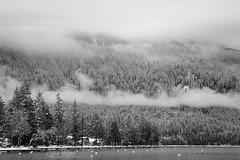 Winter Morning at Cultus Lake (wilbias) Tags: lake fog overcast mount kidd winter morning cultus british columbia canada black white monochromatic clouds snow