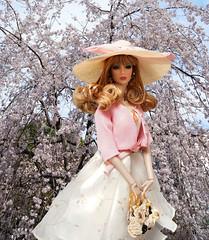 桜咲く(Cherry tree blooms) (RockWan FR) Tags: cherrytree edenblair nuface fashionroyalty integritytoys fashiondoll