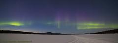 aurora 24.3.2018b (Hotel Korpikartano) Tags: green auroraborealis northernlights northernfinland revontulet hotelkorpikartano korpikartanofi menesjarvi inarilapland laplandfinland lappi