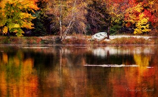 Autumn in the Poconos