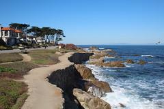 IMG_7626 (mudsharkalex) Tags: california pacificgrove pacificgroveca