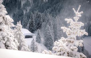 Hidden treasure: The Karwendel