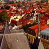 deventer in red (sculptorli) Tags: red dehoven deventer overyssel roof church lebuïnuskerk stlebuinus salland hanseaticleague 荷兰 holland nederland netherlands ijssel holanda olanda architecture