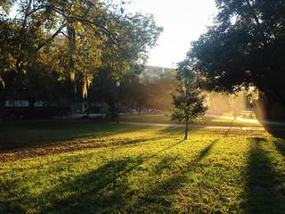Campus Walks