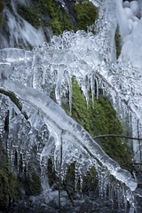 Oeuvre d'art naturelle -*---+ (Titole) Tags: ice branches cold frozen titole nicolefaton moss tufière 15challengeswinner