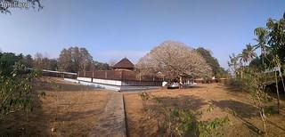 Kuttanellur Sree Durga Bhagavathi Temple