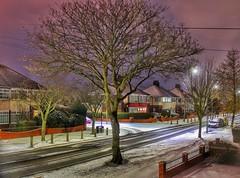 One snowy night in Hull!😁🌟☃😁 (LeanneHall3 :-)) Tags: street winterscene snow houses buildings trees branches treetrunk tyretracks streetlamps purple sky landscape night nightshot nightphotography canon 1300d longexposure