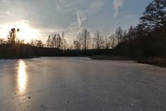 """Frozen """"Island pond"""" (Karel Suchánek) Tags: winter pond frozen frost ice sunshine afternoon velkýostrovnírybník velkáhleďsebe lumix lx100 ostrovnírybník ostrovák"""
