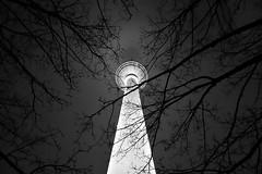 Hell beleuchteter Fernsehturm (my-pixx) Tags: berlin fernsehturm nacht sw bw schwarz weis äste baum