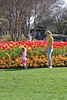 dallas blooms 2018 6 (reluctant_paladin) Tags: dallas texas arboretum blooms flowers garden spring 2018 tulips