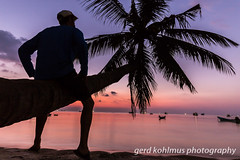 Watching the Sairee Beach sunset (Gerd Kohlmus) Tags: sairee beach koh tao sunset palm tree