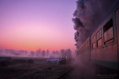 Good morning by ahimsia - Regular steam train on the Wolsztyn-Leszno line