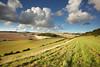 South Downs (Alan MacKenzie) Tags: landscape farm fields clouds cumulus southdowns nationalpark wideangle weather sunshine sussex england