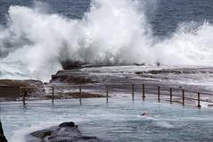 North Curl Curl pool (LSydney) Tags: curlcurl pool swimmer waves spray foam sea rocks