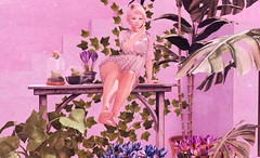 Petite garden flower (:-parfaitsprinkles-:) Tags: c88 collabor88 garden plant pink petite bear kurimukuma hive halfdeer vespertine cestlavie tram nomad foxcity semotion march sl slife secondlife blog style