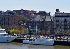 View of Savannah from the River (RockN) Tags: savannahriver cruise march2018 savannah georgia