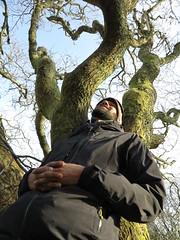 leaning on tree (squeezemonkey) Tags: northwales snowdonia winter castlestafftrip tremadog portrait tree moss sky craigpantifan uppertier crag