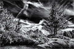 Mountains, Trees and Clouds... (Ody on the mount) Tags: anlässe berge bäume dolomiten em5 fanes fototour himmel italien kondensstreifen omd olympus pflanzen südtirol urlaub wolken bw monochrome sw marebbe trentinoaltoadige it