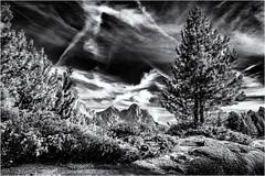 Mountains, Trees and Clouds... (Ody on the mount) Tags: anlässe berge bäume dolomiten em5 fanes fototour himmel italien kondensstreifen omd olympus pflanzen südtirol urlaub wolken bw monochrome sw marebbe trentinoaltoadige it