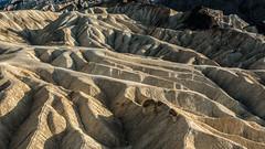 Death Valley National Park California Zabriskie Point (Feridun F. Alkaya) Tags: nps ngc coyote usa nationalpark zabriskiepoint sanddunes jackal desert dvnp deathvalley california mesquiteflatdunes dunes saltflats salt sky landscape artistpalette artistdrive mount goldencanyon deathvalleynationalpark