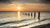 "Evening shore (janemetcalfe13) Tags: ""isleofwight"" posts horizon waves groyne clouds yellow sunset beach sea 7dwf"