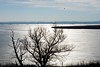 _DSC3109 (durr-architect) Tags: dike road almere lelystad oostvaardersplassen ijsselmeer lake markermeer ice water sea