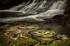 Water swirls (www.cornelia-schulz-photography.com) Tags: water waterfall swirl flow landscape river kaimai newzealand nz northisland