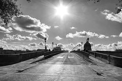 Saint Pierre bridge (loganemalie) Tags: france toulouse saintpierre pont nb noiretblanc bridge city cityscape landscape citylife cityexplore blackandwhite black white