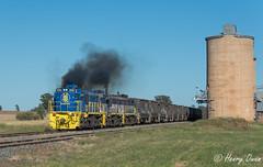 Milbrulong (Henry's Railway Gallery) Tags: 48203 48215 48218 48class alco diesel pacificnational pn graincorp freighttrain graintrain 3926 boreecreek milbrulong