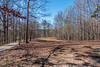 Mostly Off - Suwanee Creek Park (randyherring) Tags: park trees outdoor recreation