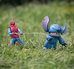 Walkies for Stitch (jezbags) Tags: spiderman struggles walk livid stitch marvel marvelstudios toy toys bandai revoltech shfiguarts macro macrophotography macrodreams canon canon80d 80d 100mm disney