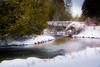 The Peaceful Cedar River . . . (Dr. Farnsworth) Tags: cedarriver foot bridge pastoral scene fish trout cedar trees snow bellaire mi michigan winter march2018