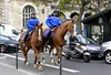Mounted police, Paris (toucanne) Tags: horse cheval police paris moto mortorcycle france street rue