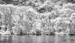 COSTA RICA 1 (Nigel Bewley) Tags: costarica centralamerica february february2018 canonef1635mmf28lusm canon5dmkii 830nm infrared digitalinfrared advancedcameraservices blackandwhite blackwhite creativephotography artphotography nigelbewley photologo tortuguero river rio rainforest sky clouds shack shed hut