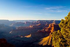 Grand Canyon-3 (amylippman1) Tags: 2016 canyon grandcanyon southrim southwest