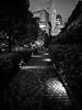 #78 Towards civilisation? (tokyobogue) Tags: tokyo japan shibuya nexus6p nexus blackandwhite blackwhite monochrome night evening dark path buildings skyscrapers lights